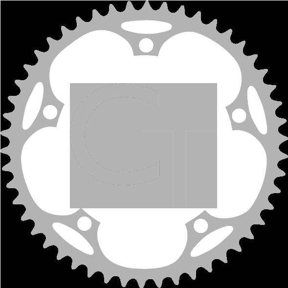 CT logo gray